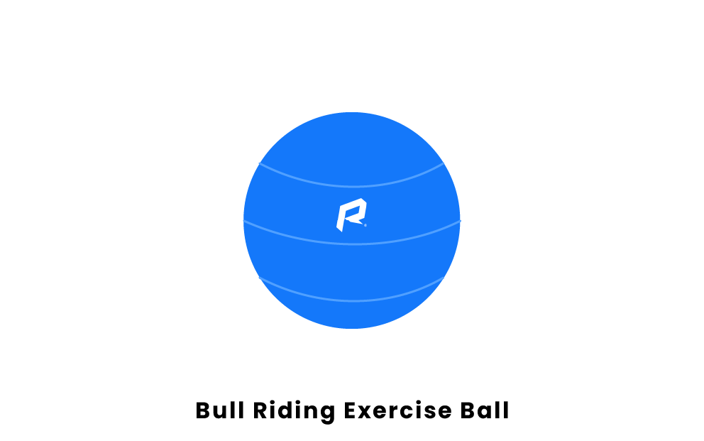 Bull Riding Exercise Ball