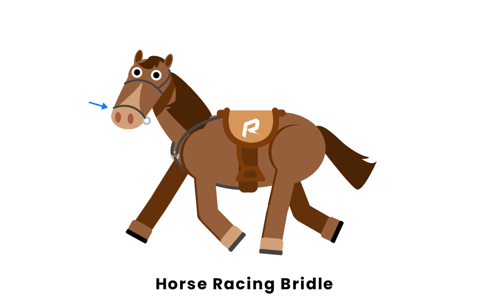 Horse Racing Bridle