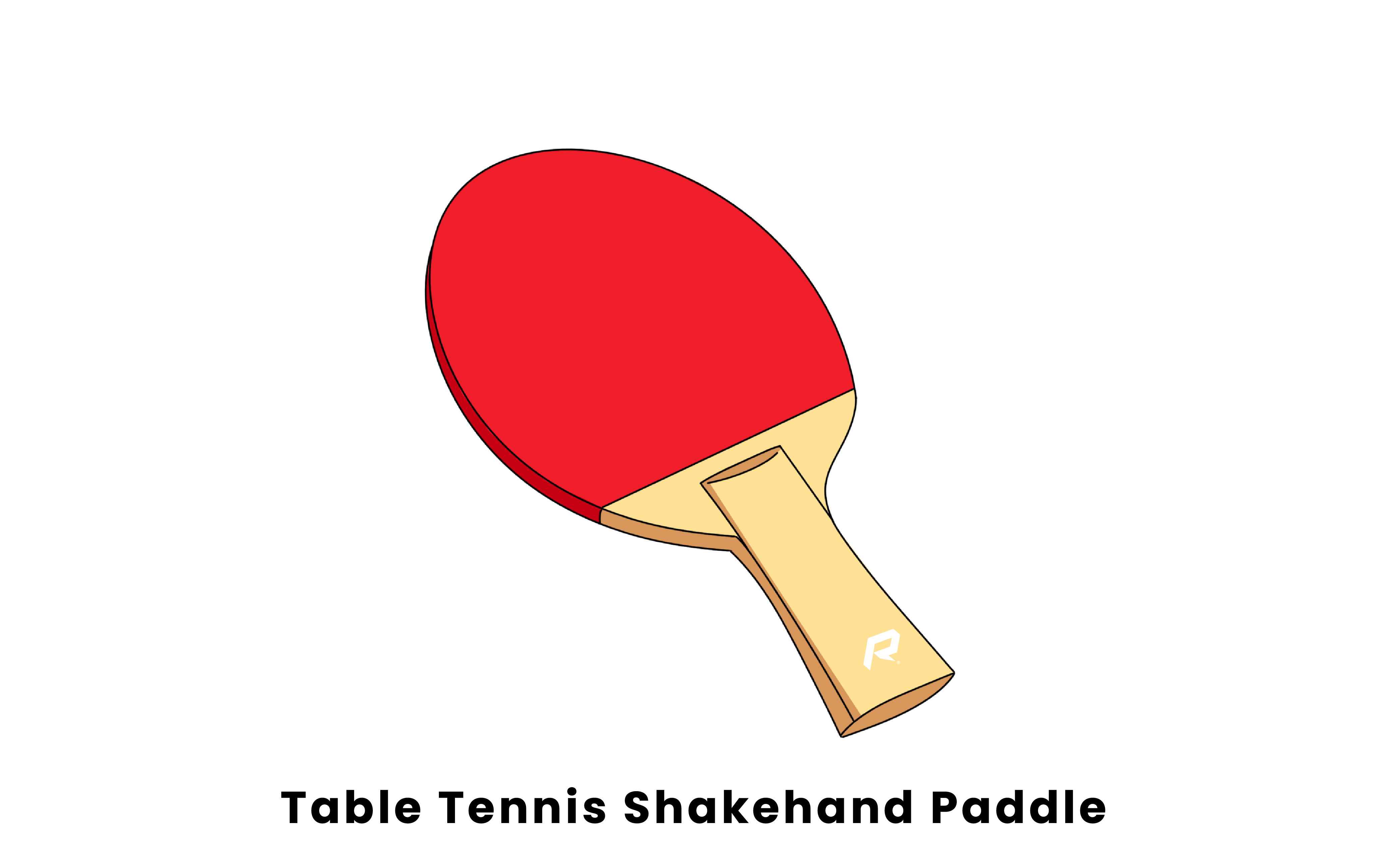 table tennis shakehand paddle